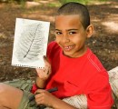 Young boy showing his leaf printing